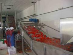 番茄醬加工生產線