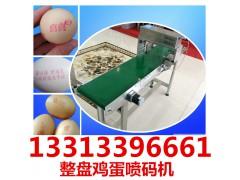 河北雞蛋噴碼機價格,小型禽蛋噴碼機生產廠家供應